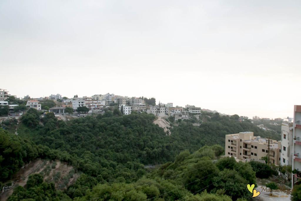 Вид на Ливан