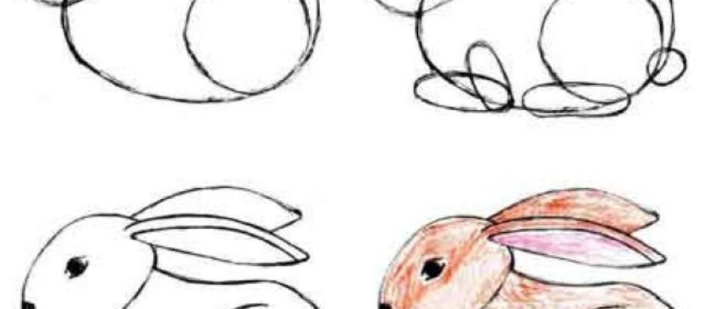 Как нарисовать зайца поэтапно?