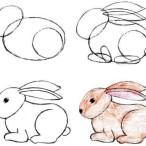 как нарисовать зайца поэтапно