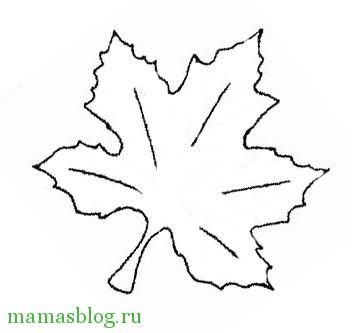 Виноградный лист фото
