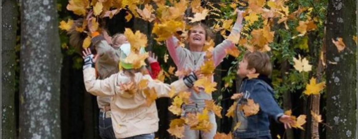 Что делать осенью?