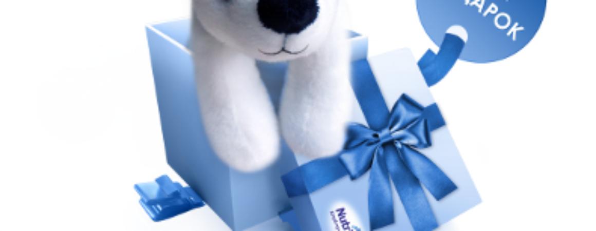 Нутрилон мишка в подарок за регистрацию