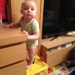 доча залезла на коробку